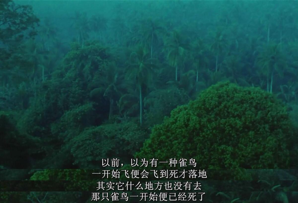 王家卫经典文艺片《阿飞正传》台词对白