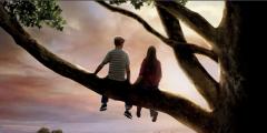 电影《怦然心动》中关于爱情的唯美台词